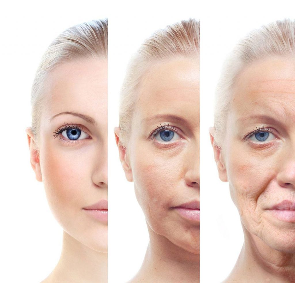 the aging special senses The human anatomy and physiology course is designed developmental aspects of the special senses special sense is a normal consequence of aging taste.